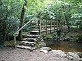 Footbridge, across the River Bovey - geograph.org.uk - 1418511.jpg
