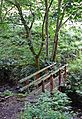 Footbridge over Hutch Brook (3727756986).jpg
