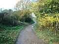 Footpath, Hayes, Kent - geograph.org.uk - 1581919.jpg