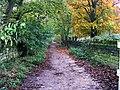 Footpath - Carr Road - geograph.org.uk - 1035847.jpg