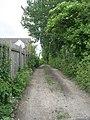 Footpath - Westfield Lane - geograph.org.uk - 1346947.jpg
