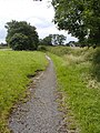 Footpath Alongside the A67 - geograph.org.uk - 502681.jpg