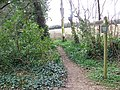 Footpath from Green Lane - geograph.org.uk - 740134.jpg
