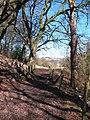 Footpath near Ridge Mill Bridge - geograph.org.uk - 1744378.jpg