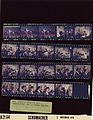 Ford B2164 NLGRF photo contact sheet (1976-11-02)(Gerald Ford Library).jpg
