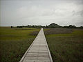 Fort Fisher State Recreation Area Basin Trail Bridge.JPG