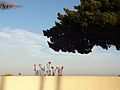Fort Rosecrans Wall.JPG