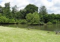 Forty Hall Lake - geograph.org.uk - 479909.jpg