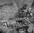 Fotothek df ps 0000120 Leichnam in einem Luftschutzkeller.jpg