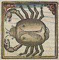 Fotothek df tg 0004431 Astrologie ^ Sternzeichen ^ Kalender.jpg