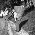 """Franc iz Prapetnega s košem """"listnikom"""" na hrbtu 1954.jpg"""