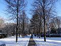 Friedhof Seestrasse 18.01.2016 11-18-45.jpg