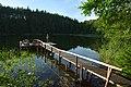 Gėlaičio ežeras - panoramio (2).jpg