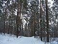 G. Miass, Chelyabinskaya oblast', Russia - panoramio (2).jpg