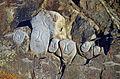 GL-Qaqortoq-Relief-02.jpg