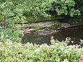 Garden-near-river-near-Glengoyne-Distillery-2.JPG