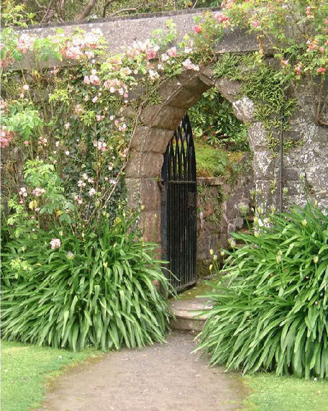 File:Gateway at Castlewellan Arboretum - geograph.org.uk - 35314.jpg