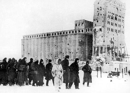 German soldiers as prisoners of war. In the background is the heavily fought-over Stalingrad grain elevator. German pows stalingrad 1943.jpg