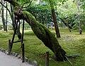 Ginkakuji (Silver Pavilion) (11062226286).jpg