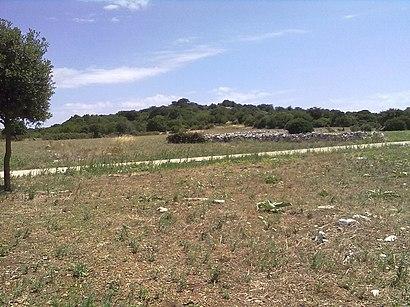 Come arrivare a Parco Archeologico Monte Sannace con i mezzi pubblici - Informazioni sul luogo