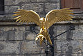 Gladstones Land Golden Hawk 2 (4530208339).jpg
