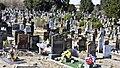 Glasnevin Cemetery (4512358481).jpg