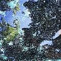 Glass (24169555650).jpg