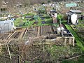 Gledhow Valley Allotments 18 March 2019 5.jpg