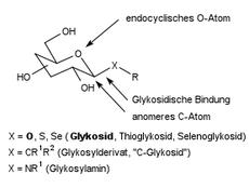 Glycosidische Bindung – Wikipedia