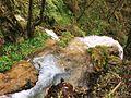 Gostiljski vodopad 4, Zlatibor.jpg