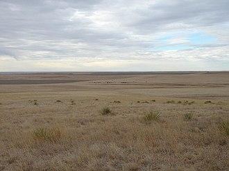 Gove County, Kansas - Image: Goveexpanse 2