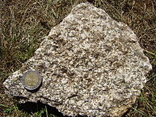 Granodiorite Common.jpg