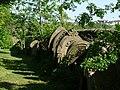 Gravestones in Tow Law cemetery - geograph.org.uk - 1343124.jpg