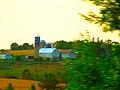 Green County Dairy Farm - panoramio.jpg