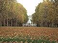 Green Park, London - DSC04265.JPG