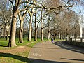 Green Park - geograph.org.uk - 332832.jpg