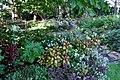 Green Spring Gardens in September (22373095297).jpg
