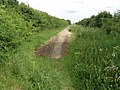 Green hill road, Elton - geograph.org.uk - 1373476.jpg