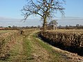 Green lane near Thulston - geograph.org.uk - 1703304.jpg