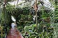 Greenhouse Hupisaaret Oulu 20130524 04.JPG