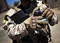 Gripping Grenades (7823846252).jpg