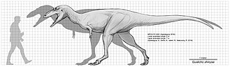 Gualicho - Estimated size compared to a human