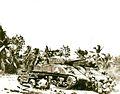 Guam USMC Photo (21626766465).jpg