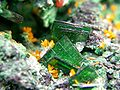 Guilleminite-Kasolite-Malachite-rads-36a.jpg