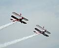 Guinot wing walkers (3668165547).jpg