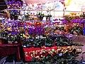 HK Victoria Park night Lunar New Year Fair flowers stall 5-Feb-2013.JPG