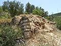 Hadassah Trail P1150513.JPG