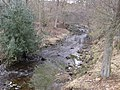 Ham Burn near Whitley Mill - geograph.org.uk - 1737891.jpg