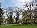 Hamm, Germany - panoramio (3043).jpg