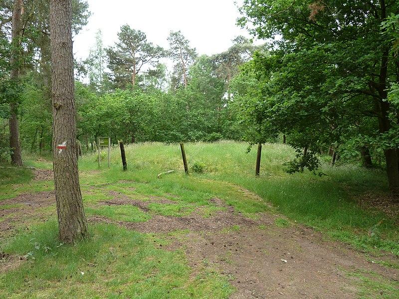 Grafheuvels Boskerkhofweg, Hamont-Achel, België
